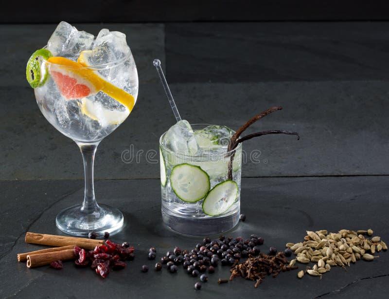 Égrenez les cocktails toniques avec le concombre et le pamplemousse de Lima photographie stock