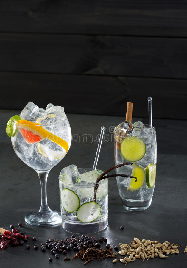 Égrenez les cocktails toniques avec le concombre et le pamplemousse de Lima photos libres de droits