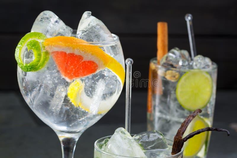 Égrenez les cocktails variés par tonique avec le citron et le pamplemousse de Lima photographie stock libre de droits