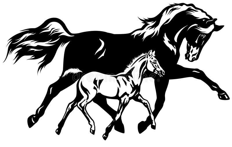 Égua com branco do preto do potro ilustração royalty free