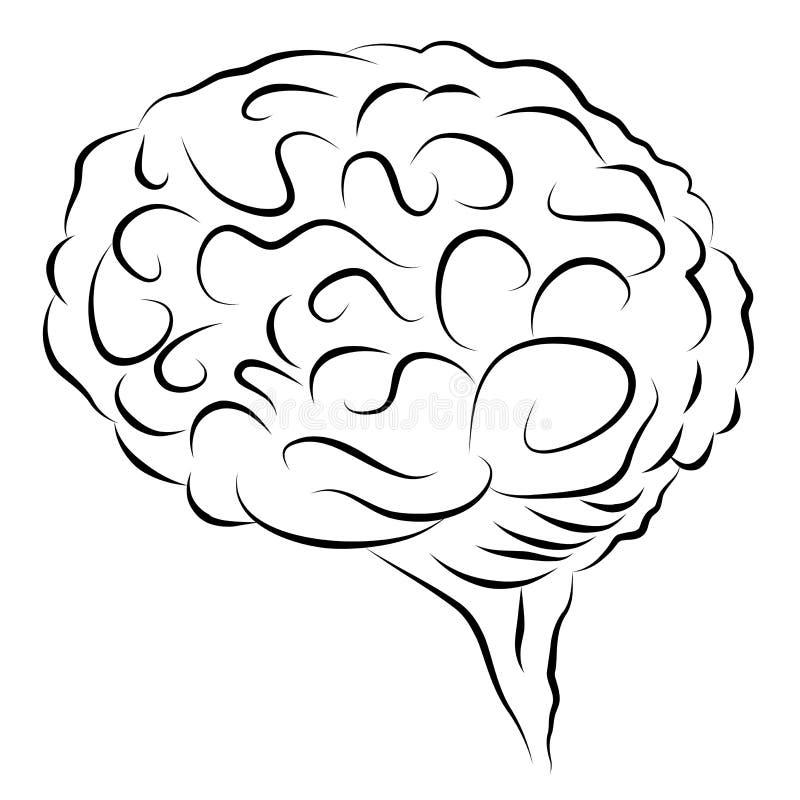 Élément élégant de conception de cerveau humain illustration stock