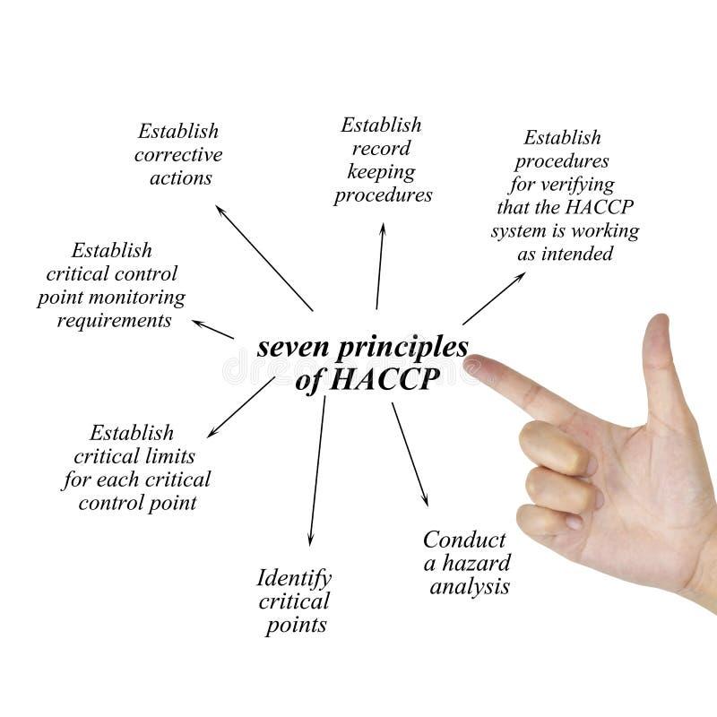 Élément d'écriture de main de femme du principe sept du concept de haccp sur le backgrou blanc image stock