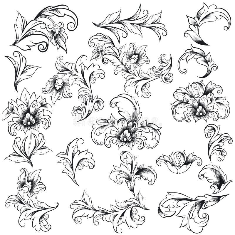 Éléments décoratifs de conception florale illustration libre de droits