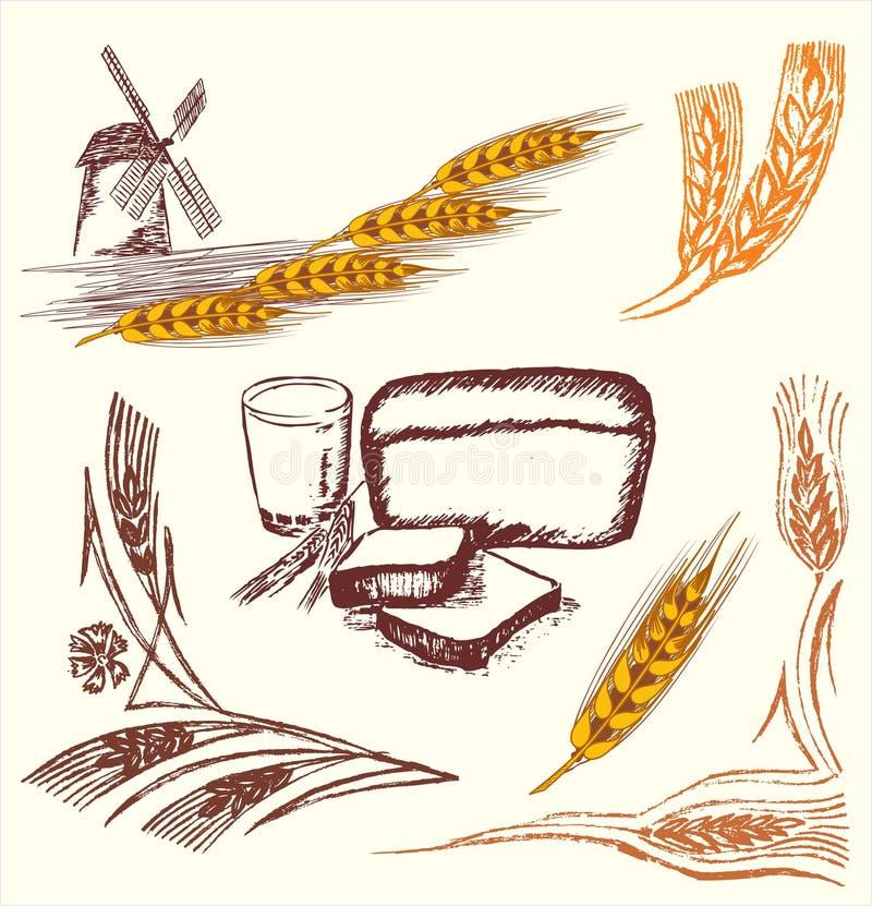 Éléments de blé illustration stock