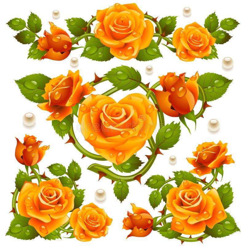 Éléments de conception de Rose jaune de vecteur d'isolement sur le fond blanc illustration stock