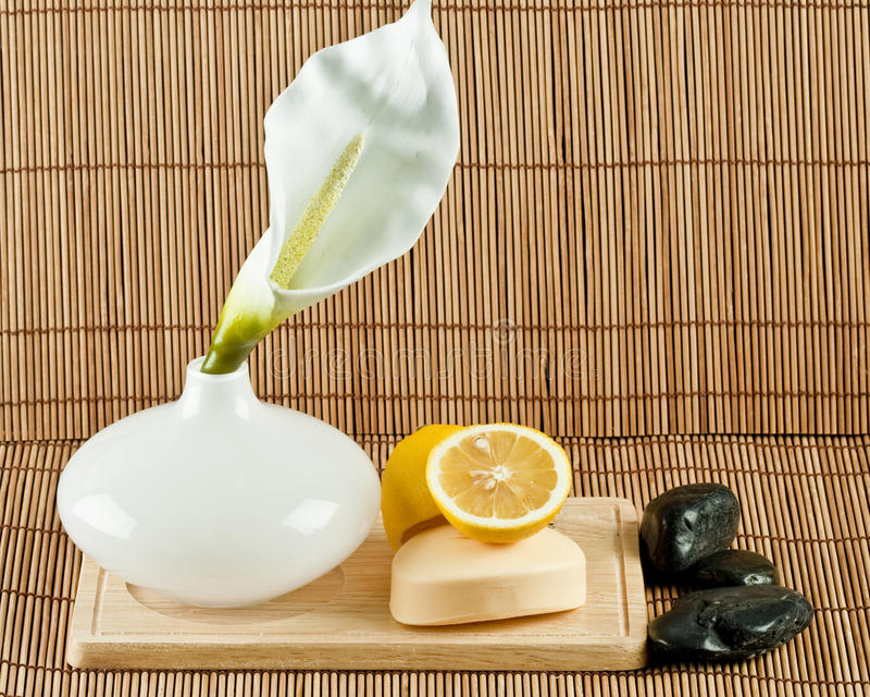 Éléments de soin de peau image stock