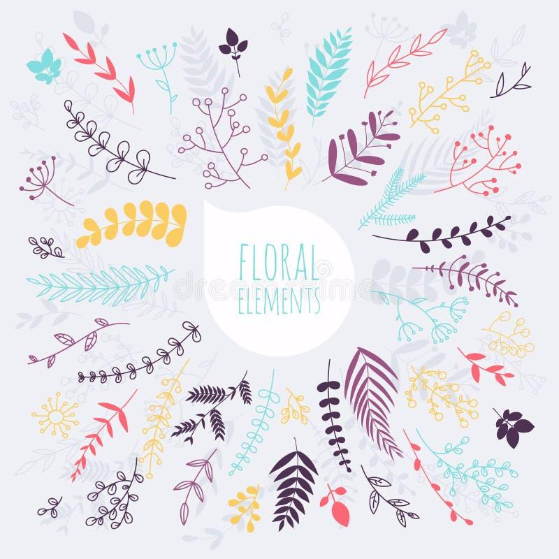 Éléments floraux main d'éléments dessinée par conception Collection de sprin illustration libre de droits