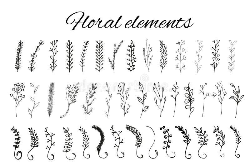 Éléments floraux tirés par la main de logo illustration stock