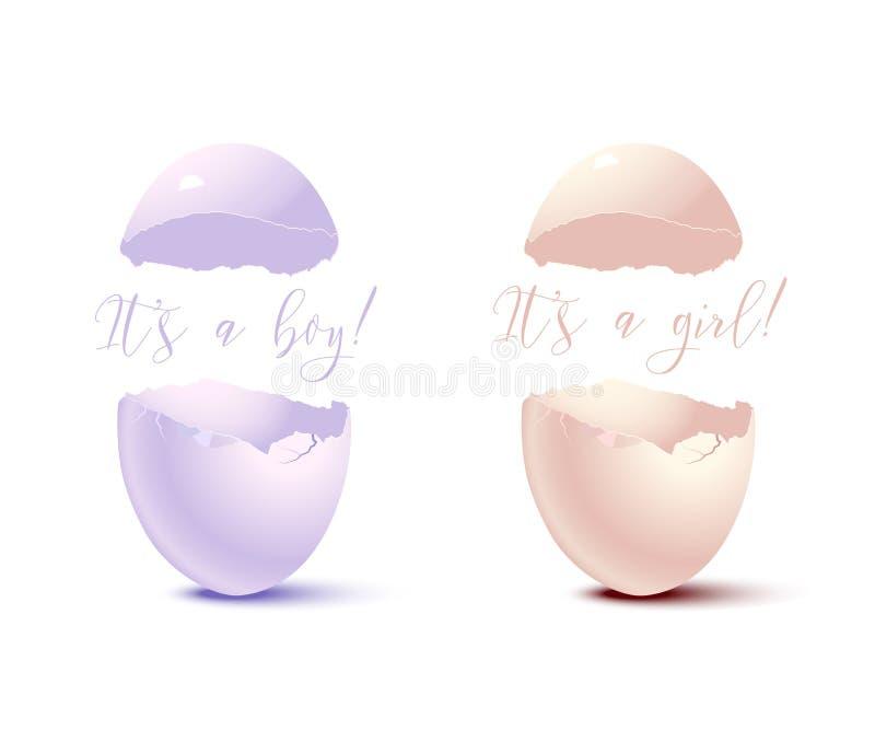 Éléments nouveau-nés de carte Dirigez la coquille d'oeuf rose avec elle le ` s un texte de fille et la coquille d'oeuf bleue avec illustration de vecteur