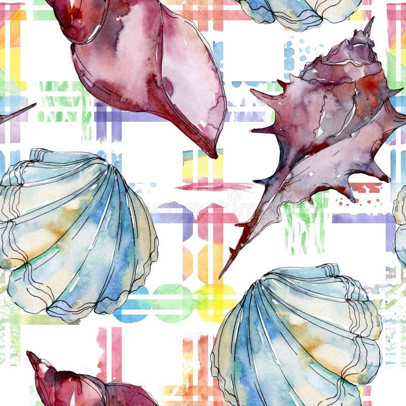 Éléments tropicaux de coquillage de plage d'été Ensemble d'illustration de fond d'aquarelle Mod?le sans couture de fond illustration libre de droits