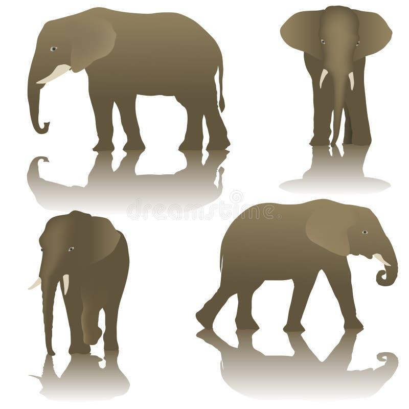 Download Éléphant illustration de vecteur. Illustration du africain - 56485264