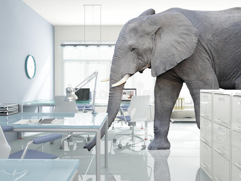 Éléphant dans une chambre