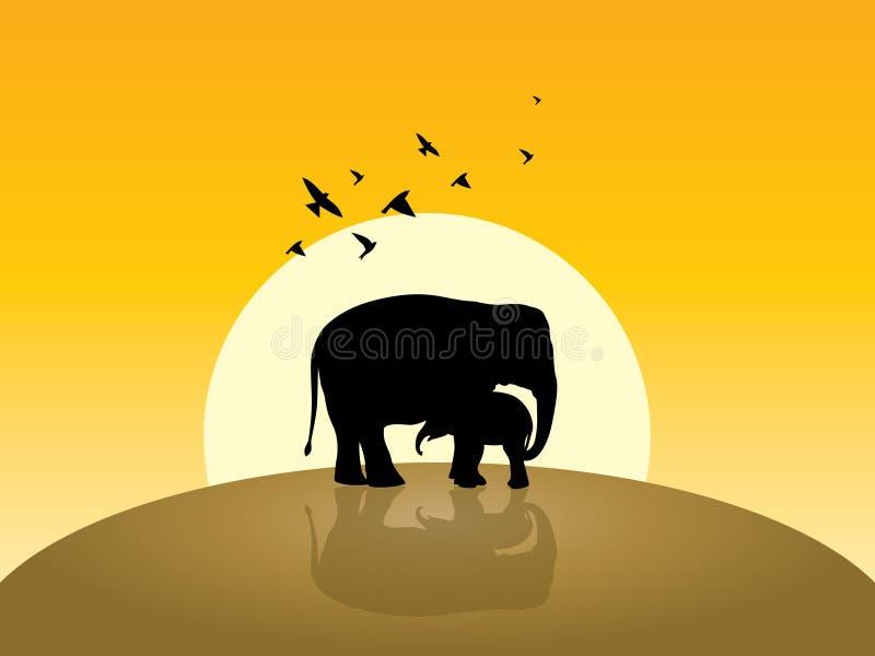 Éléphant deux, lever de soleil et piloter quelques oiseaux photo libre de droits