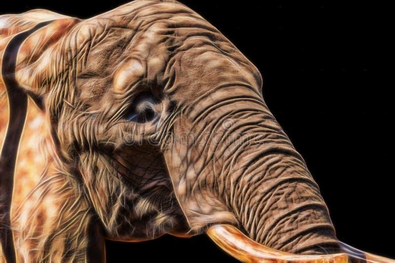 Éléphant illustré sur le fond noir photos stock