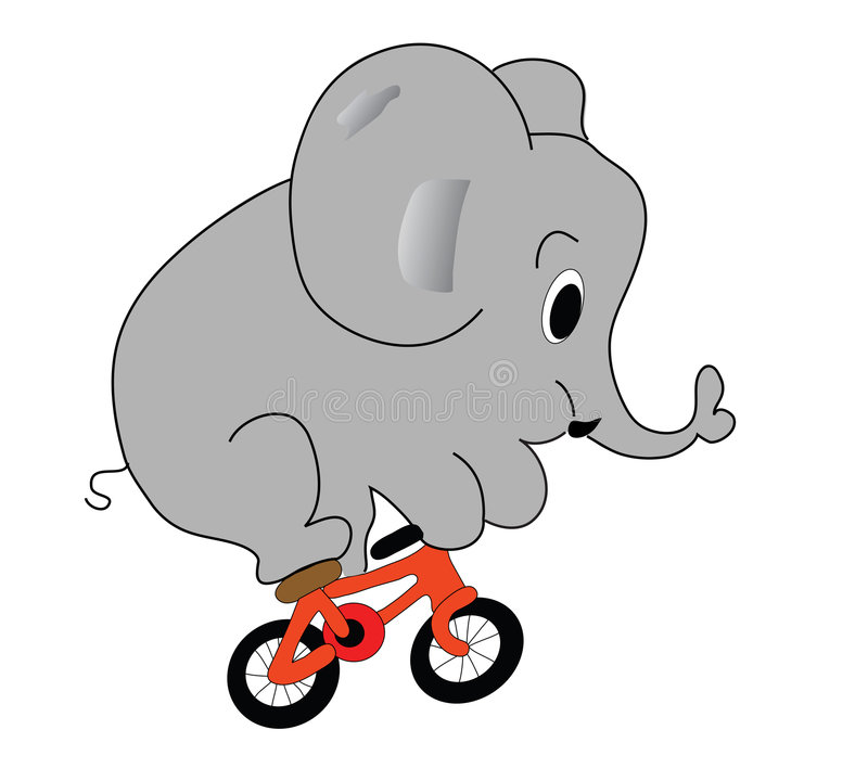 Éléphant sur la bicyclette image stock