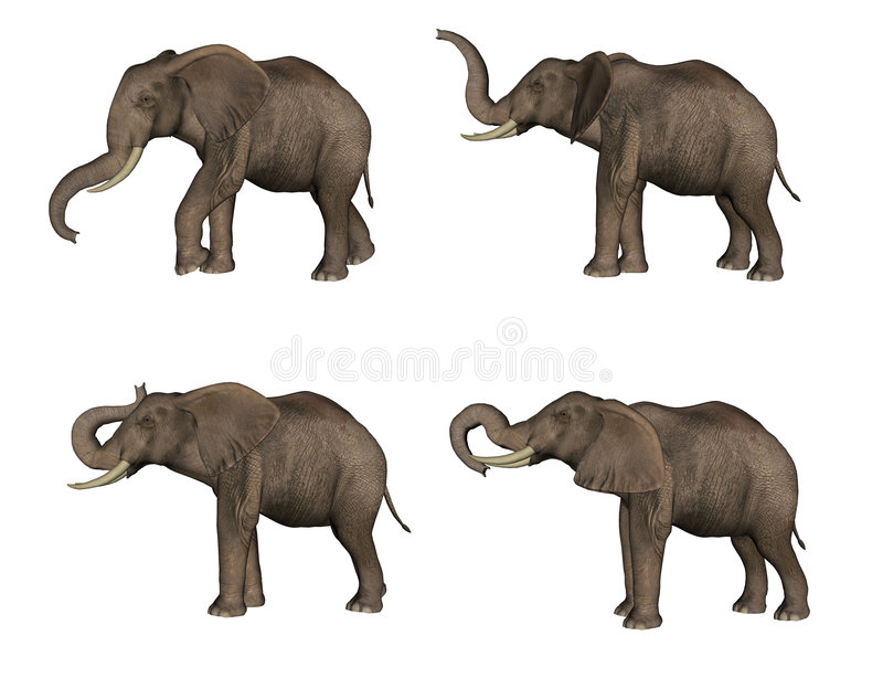 Éléphants illustration libre de droits