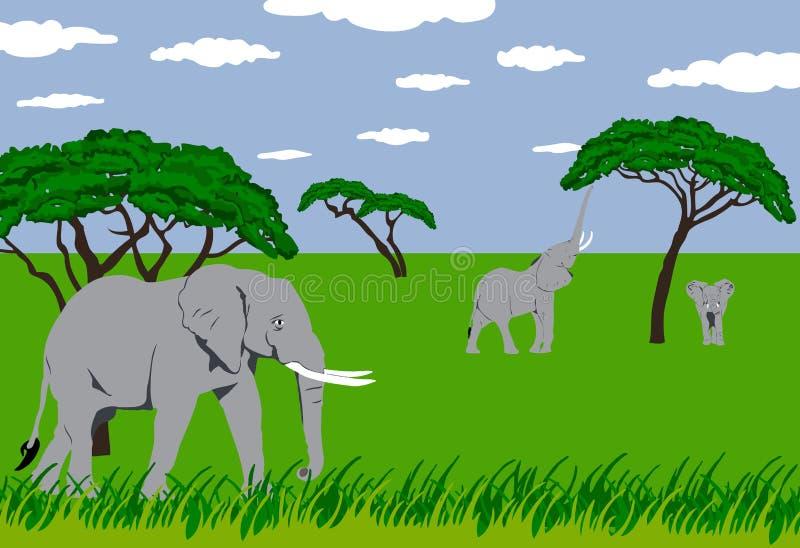 Éléphants dans la prairie illustration de vecteur