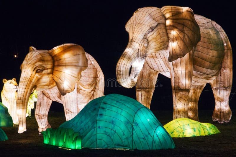 éléphants Le Belarus, Minsk - 19 mars 2019 : Exposition du festival de lanterne en parc botanique de Minsk, Belarus image libre de droits