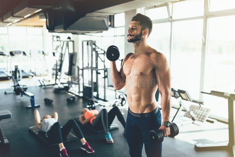 Élaboration forte de bodybuilder photographie stock libre de droits