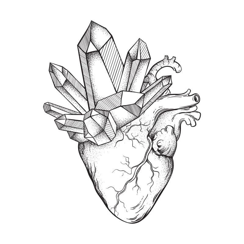 Élevage de cristaux du coeur humain d'isolement sur le fond blanc Tiré par la main schéma et point fonctionnent l'illustration de illustration libre de droits