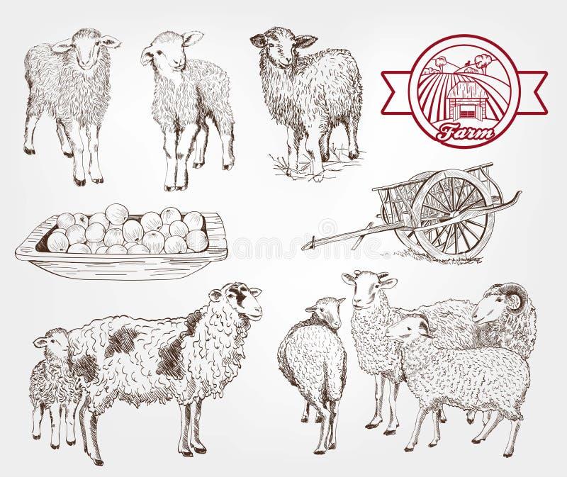 Élevage de moutons illustration de vecteur