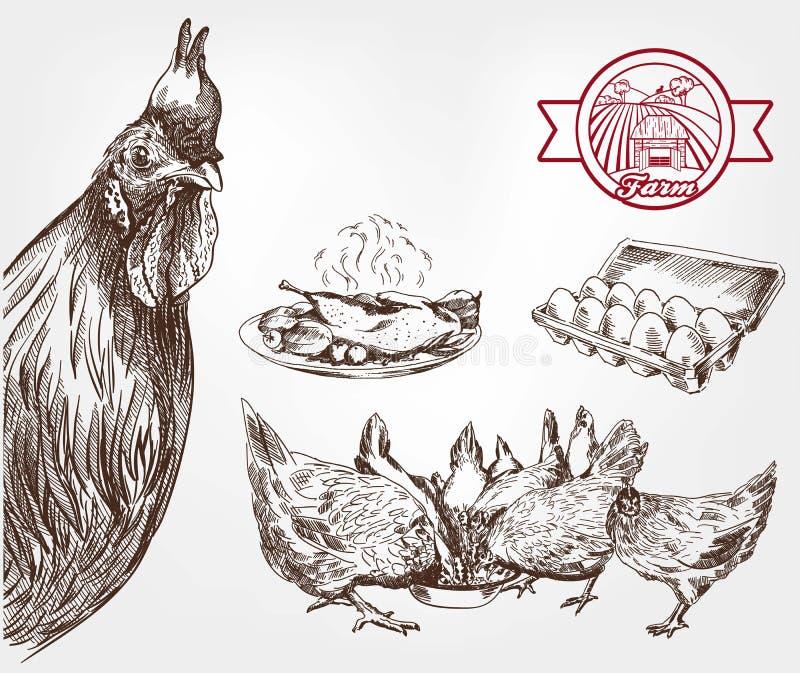 Élevage de volaille illustration stock