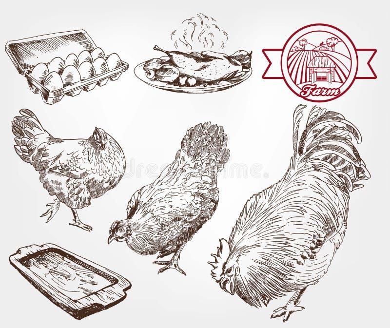 Élevage de volaille illustration de vecteur