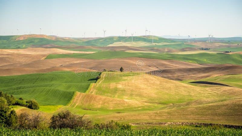 Énergie éolienne sur le Palouse photo stock