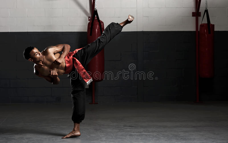 Énergie d'arts martiaux photo stock