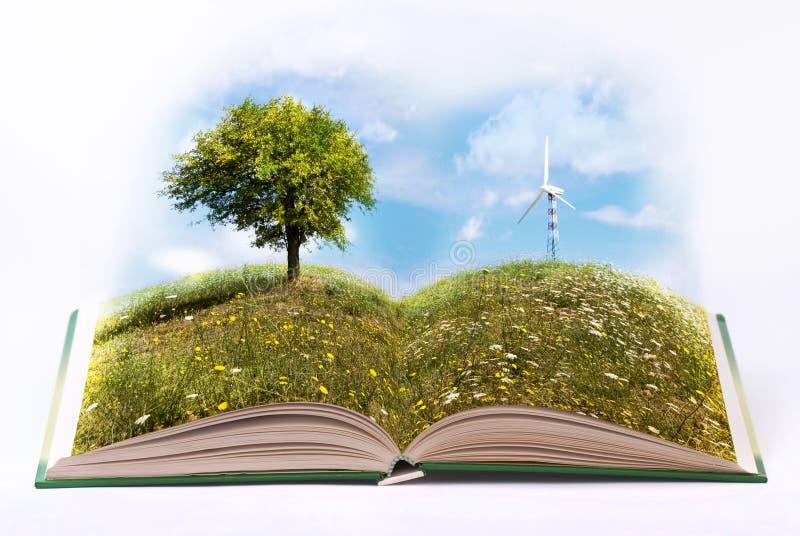 Énergie de substitution et environnement écologique image libre de droits