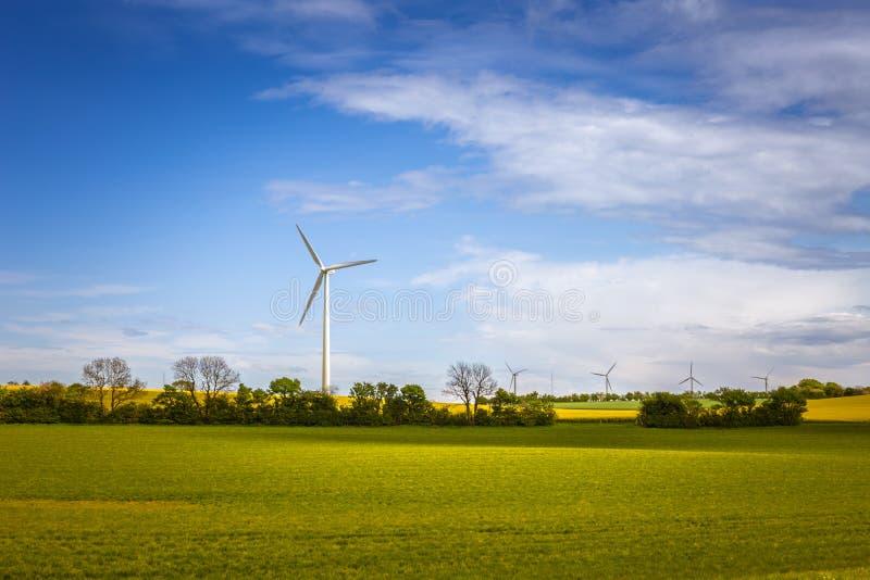 Énergie soutenable Paysage danois avec des moulins à vent et le fi vert image libre de droits