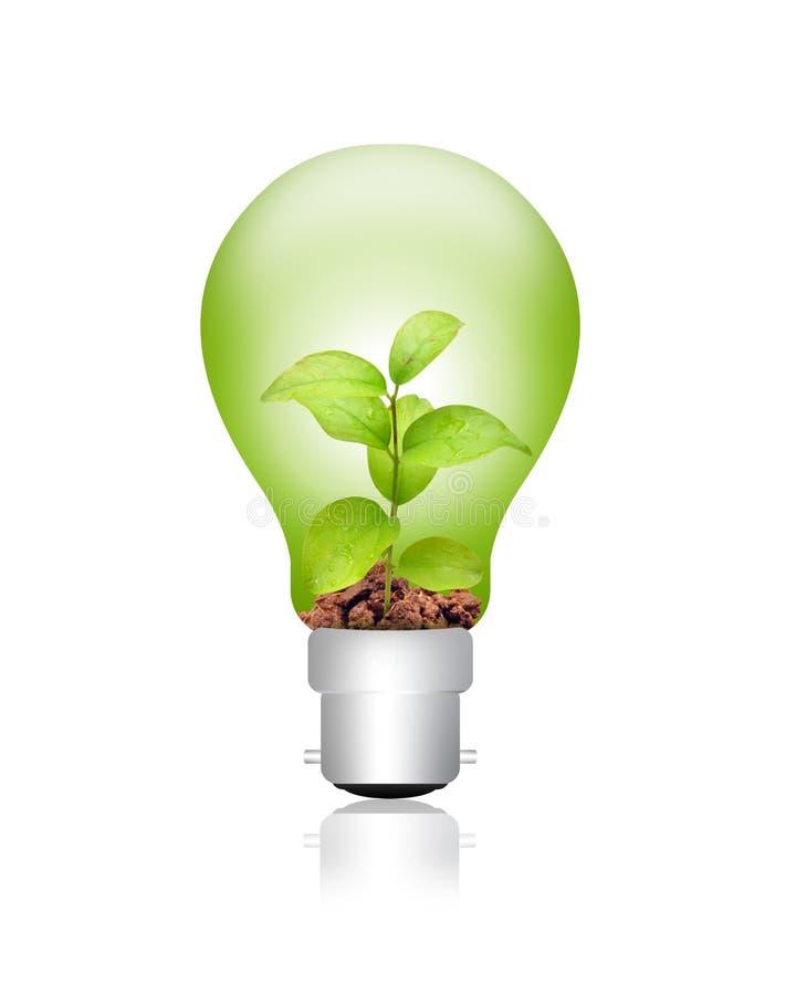 Énergie verte photos stock