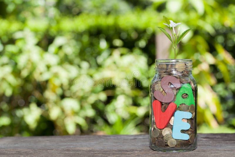 Épargnez l'argent pour l'argent de concept d'investissement au pot et à l'usine, Busine photos stock