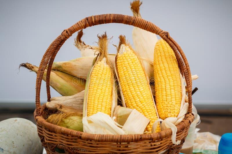 Épi de blé, noyaux jaunes de indication, photo de maïs dans un panier en osier images stock