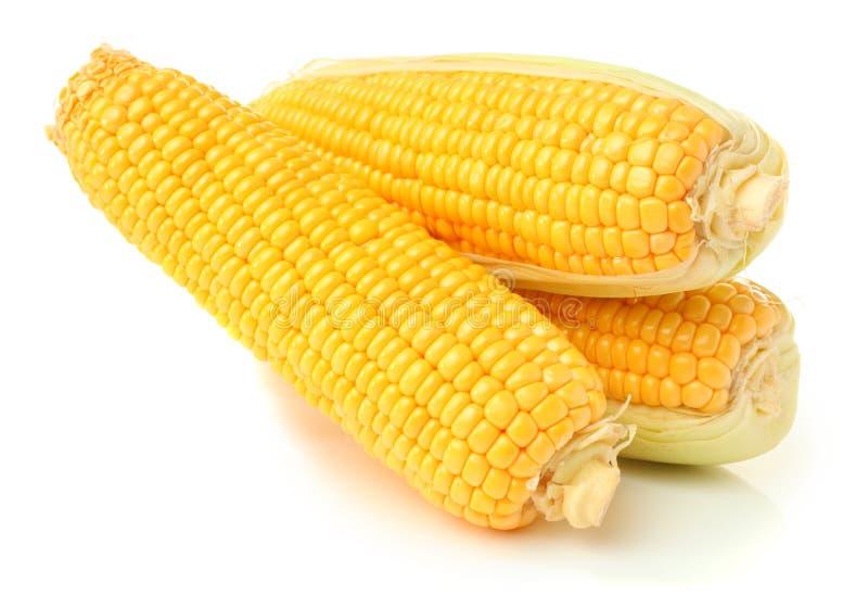Download Épi de maïs image stock. Image du fond, trois, coupure - 56475511