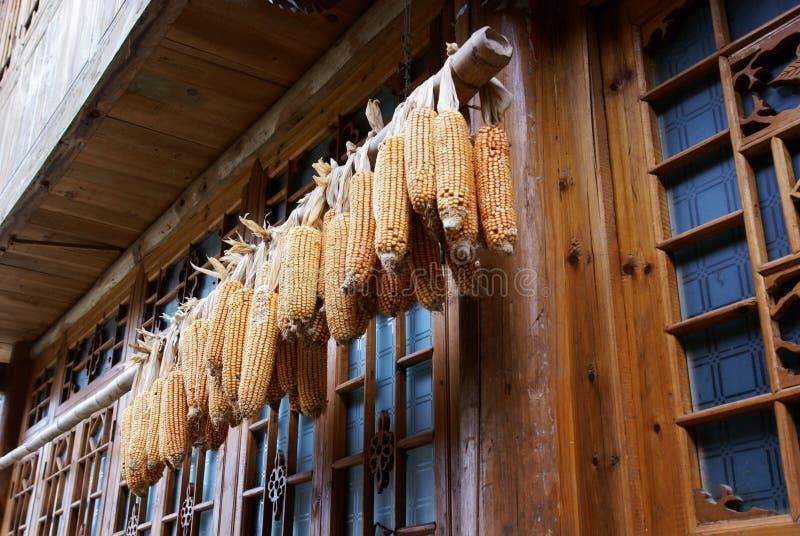 Épi de maïs avec la maison en bois photo stock