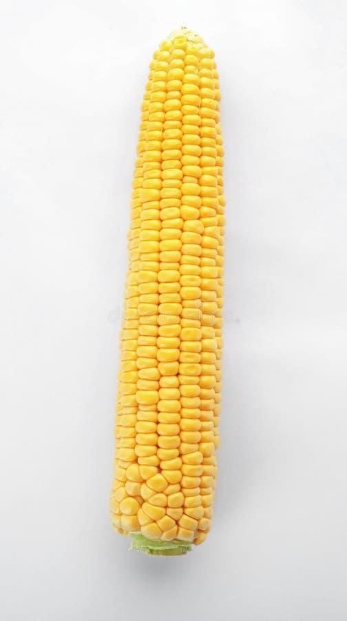 Épi savoureux de maïs image stock