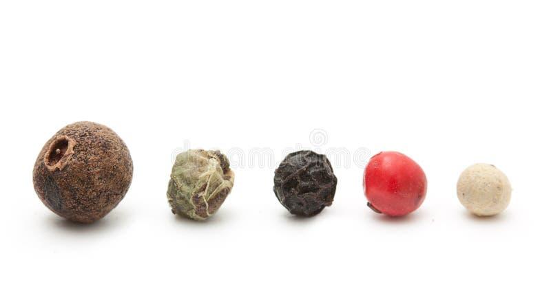 Épice de poivre noir, rouge, vert, blanc photo stock