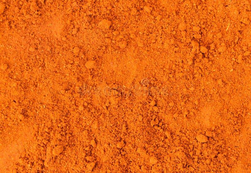 Épice de poudre de Masala image libre de droits