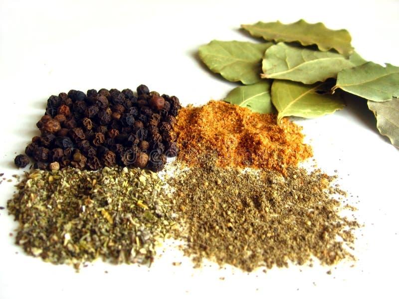 Épice et herbes pour des gourmets image stock