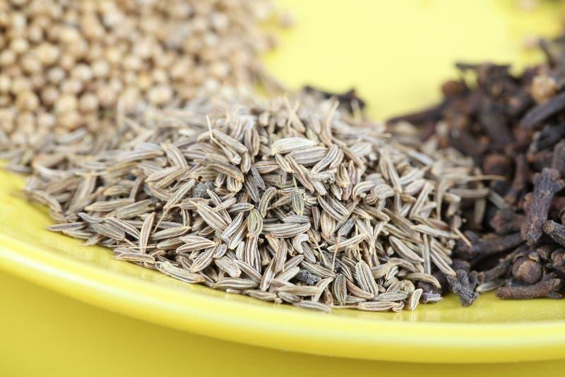 Épice mélangée - coriandre, graines d'anis, clous de girofle images libres de droits