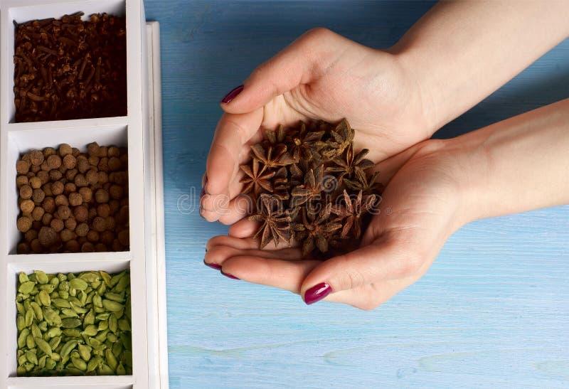 Épices dans les mains sur un fond en bois image stock