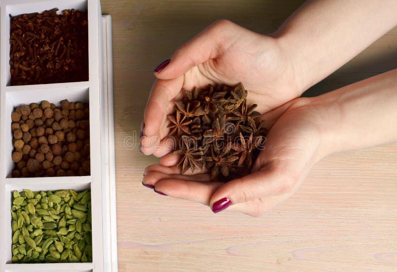 Épices dans les mains sur un fond en bois photo stock