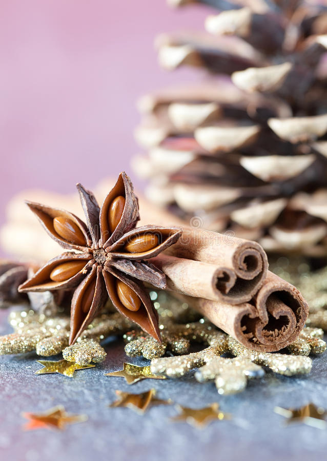 Épices de Noël images stock