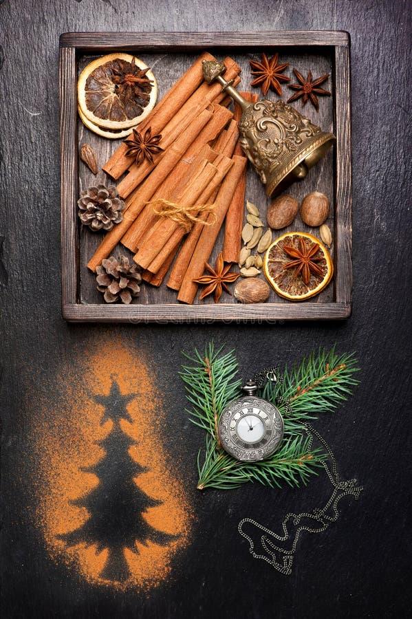 Épices de Noël pour la cuisson et la décoration image libre de droits