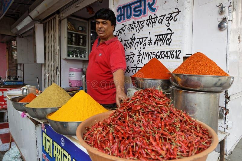 Épices de stock du marché traditionnel dans Udaipur photo libre de droits