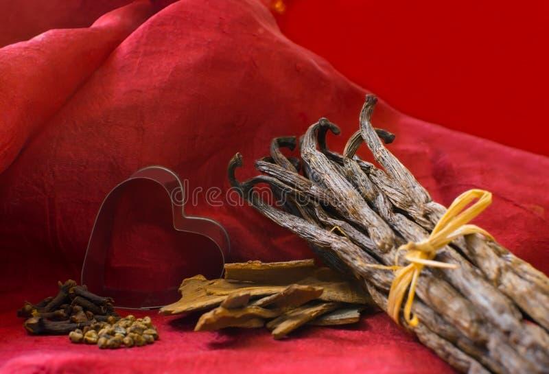 Épices et coeur de cosses de vanille photographie stock libre de droits