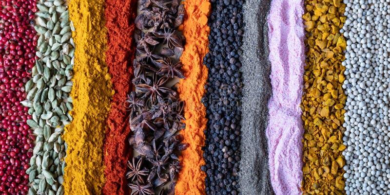 Épices et herbes indiennes de différentes couleurs comme fond Condiments de texture pour l'en-tête de page Web images libres de droits