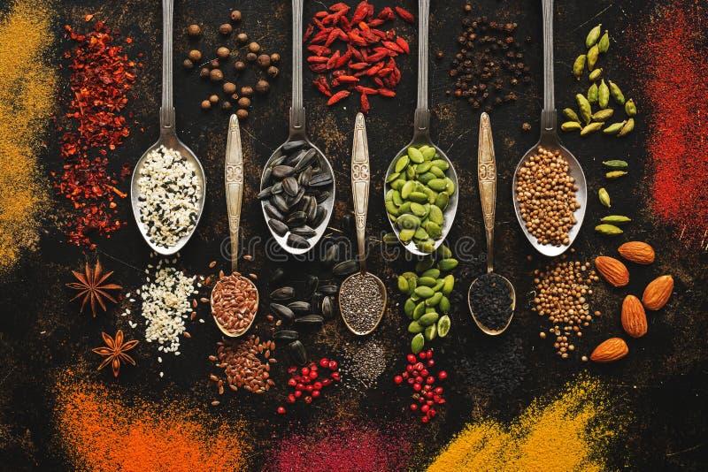 Épices, graines, écrous, baies de goji sur un fond foncé Épices colorées dans des cuillères Vue supérieure photo stock