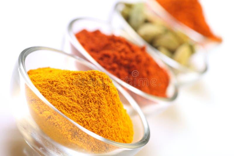 épices indiennes photo stock